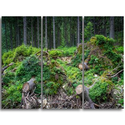 Designart Wild Deep Forest Rocks And Hills Landscape Triptych Canvas Art Print