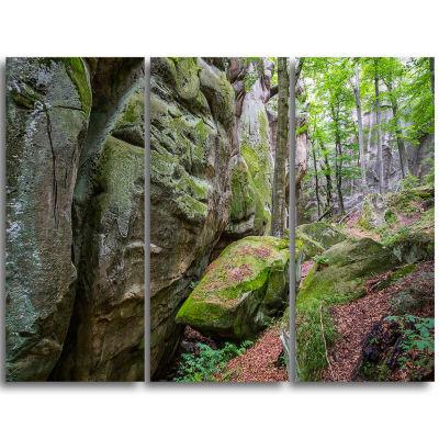 Design Art Wild Deep Moss Forest Ukraine LandscapeTriptych Canvas Art Print