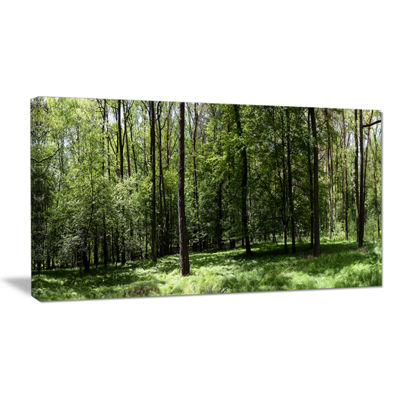 Designart Wild Green Forest Panorama Oversized Forest Canvas Artwork
