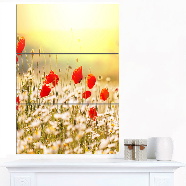 Designart Wild Meadow With Poppy Flowers Floral Canvas Art Print - 3 Panels