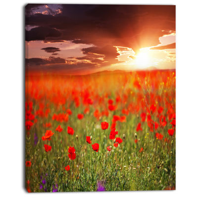 Designart Wild Poppy Flowers At Cloudy Sunset Large Flower Canvas Art Print