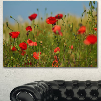 Designart Wild Poppy Flowers In Green Garden Floral Canvas Art Print