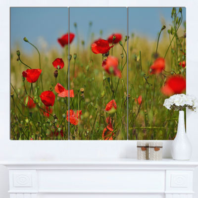 Designart Wild Poppy Flowers In Green Garden Floral Canvas Art Print - 3 Panels
