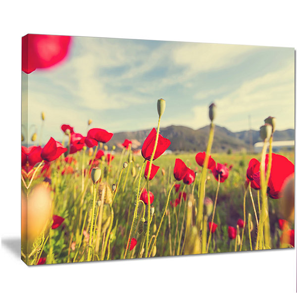 Design Art Wild Red Poppy Flowers In Field Large Flower Canvas Art Print
