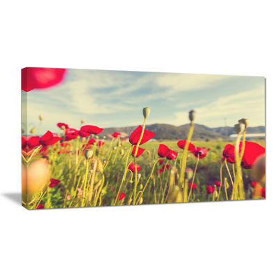 Designart Wild Red Poppy Flowers In Field Large Flower Canvas Art Print
