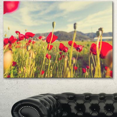 Designart Wild Red Poppy Flowers In Field Large Flower Canvas Art Print - 3 Panels