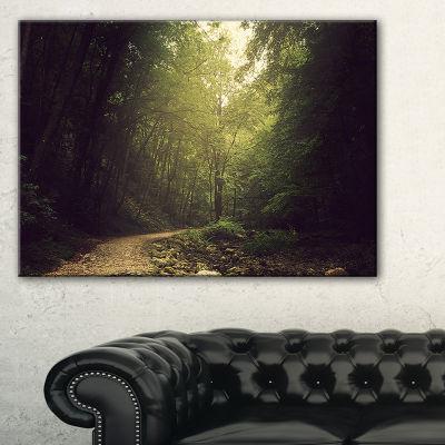 Designart Wild Way Into The Dark Forest Forest Canvas Art Print