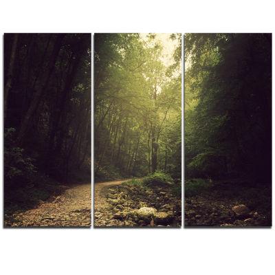 Designart Wild Way Into The Dark Forest Forest Triptych Canvas Art Print