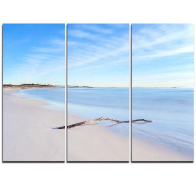 Designart Wood Branch On White Beach Modern Seascape Triptych Canvas Artwork