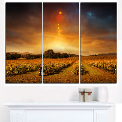 Designart Yellow Autumn Vineyard Sunset LandscapeArtwork Triptych Canvas