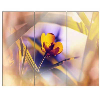 Designart Yellow Flower On Blue Background FloralCanvas Art Print - 3 Panels