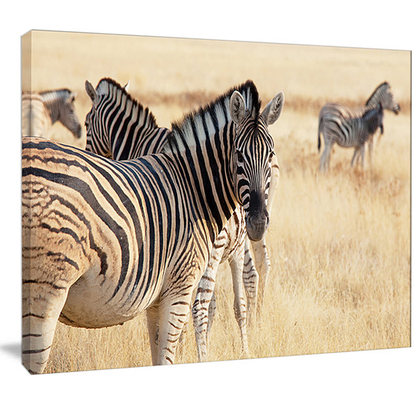 Designart Zebra In Etosha Wandering In Grass African Canvas Art Print