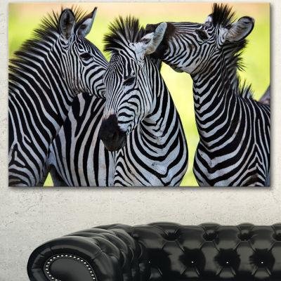 Designart Zebras Socializing And Kissing AfricanCanvas Art Print - 3 Panels