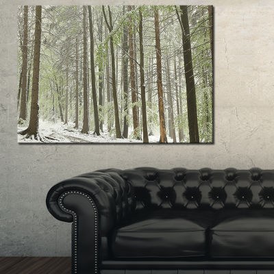 Designart Spring Beech Forest Scenery 3-pc. Canvas Art