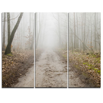 Designart Straight Forest Road In Fall 3-pc. Canvas Art