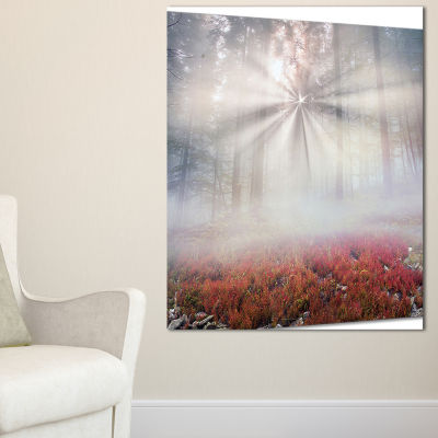 Designart Sun Rays Illuminating Foggy Forest 3-pc. Canvas Art