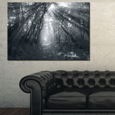 Designart Sun Rays Through Gray Trees Canvas Art