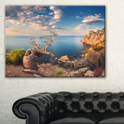 Designart Sunny Morning With Old Tree 3-pc. Canvas Art