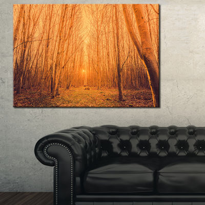 Designart Sunrise In A Forest With Tall Trees Canvas Art