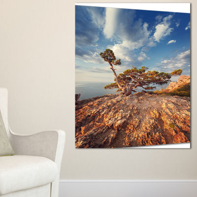 Designart Sunrise With Old Tree At Peak 3-pc. Canvas Art