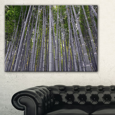 Designart Thick Bamboo Trunks In Japan Canvas Art