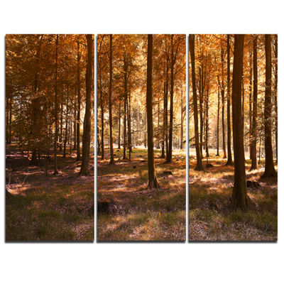 Designart Thick Fall Forest With Orange Leaves 3-pc. Canvas Art