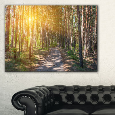 Designart Thick Forest With Yellow Sun Rays Canvas Art