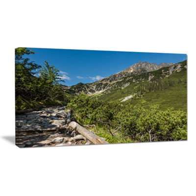Designart Tourist Trail In High Mountains Canvas Art