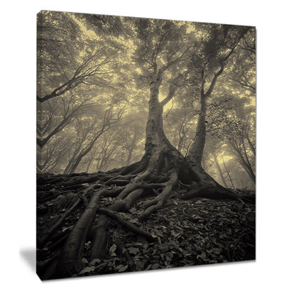 Designart Tree With Big Roots On Halloween Canvas Art