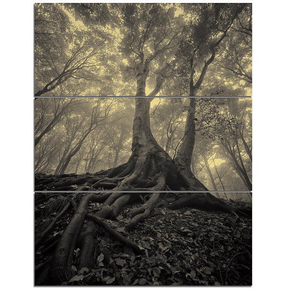 Designart Tree With Big Roots On Halloween 3-pc. Canvas Art
