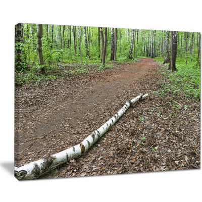Designart Trunk Of Birch On The Track Canvas Art