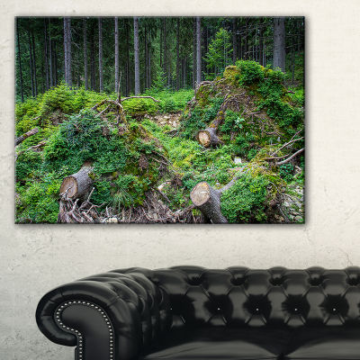 Designart Wild Deep Forest Rocks And Hills Canvas Art
