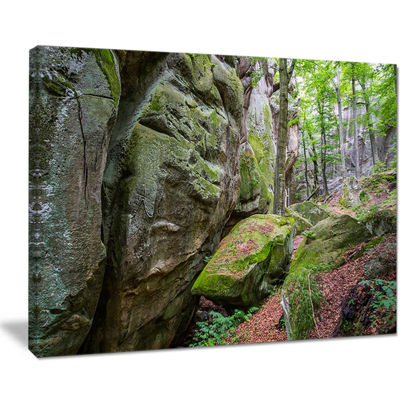 Designart Wild Deep Moss Forest Ukraine Canvas Art