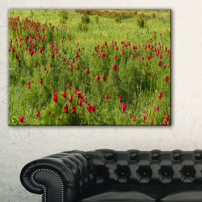 Designart Wild Peonies Flower In Steppe Canvas Art