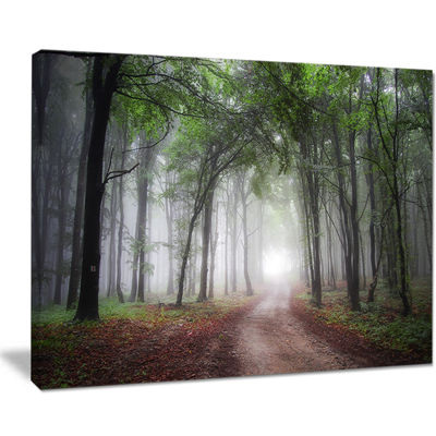 Designart Light Through Green Fall Forest Canvas Art