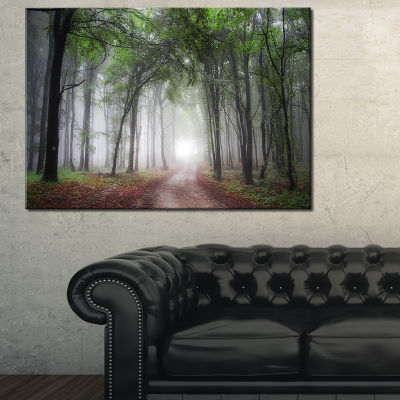 Designart Light Through Green Fall Forest Canvas Art