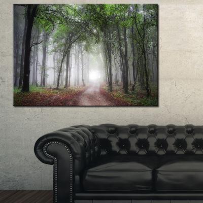 Designart Light Through Green Fall Forest 3-pc. Canvas Art
