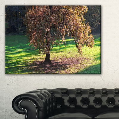 Designart Lonely Beautiful Autumn Tree Canvas Art