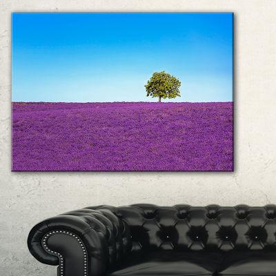 Designart Lonely Tree In Lavender Field Canvas Art