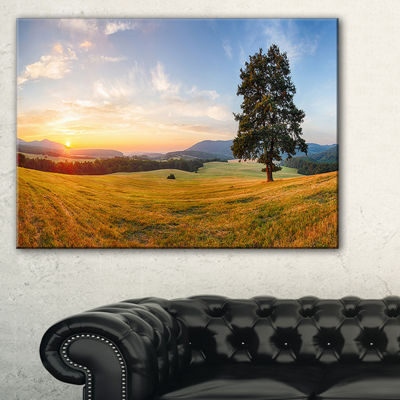 Designart Lonely Tree On Meadow At Sunset Canvas Art