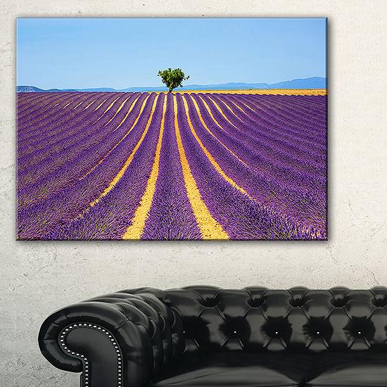 Designart Lonely Uphill Tree In Lavender Field Canvas Art
