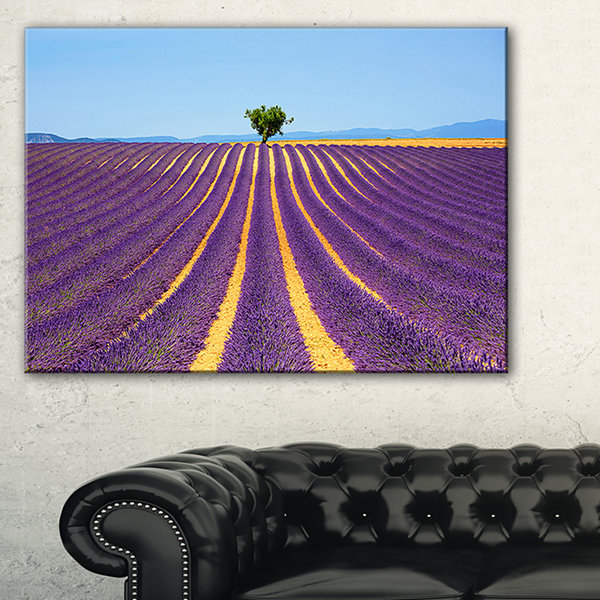 Designart Lonely Uphill Tree In Lavender Field Canvas Art