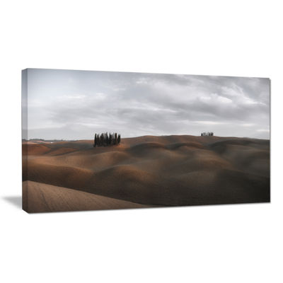 Designart Cypress Grove At The Field Panorama Canvas Art