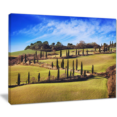 Designart Cypress Trees Scenic Road Siena Italy Canvas Art