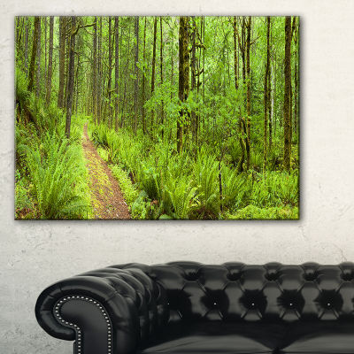 Designart Lush Forest Path Columbia River Canvas Art
