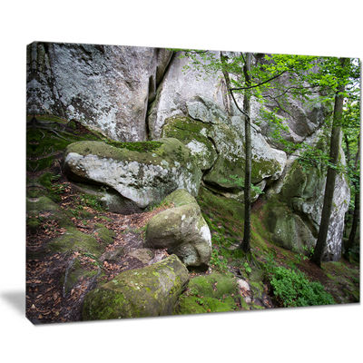 Designart Deep Moss Forest With Rocks Canvas Art