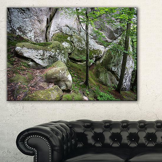 Designart Deep Moss Forest With Rocks Canvas Art