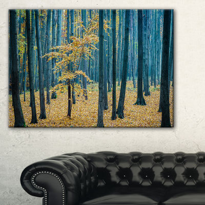 Designart Dense Autumn Beach Forestwork Canvas Art