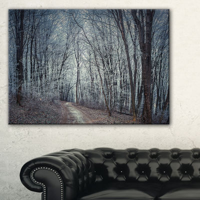 Designart Dense Gray Fall Forest Path Canvas Art