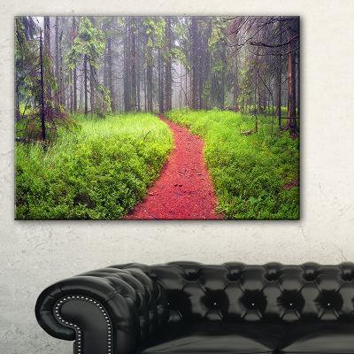 Designart Desert Footpath To Misty Forest Canvas Art